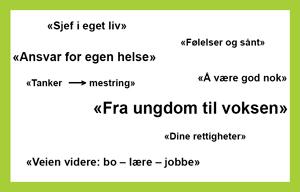 Ordsky: Sjef i eget liv, Følelser og sånt, Ansvar for egen helse, Å være god nok, Tanker -> mestring, Fra ungdom til voksen, Dine rettigheter, Veien videre: bo - lære - jobbe